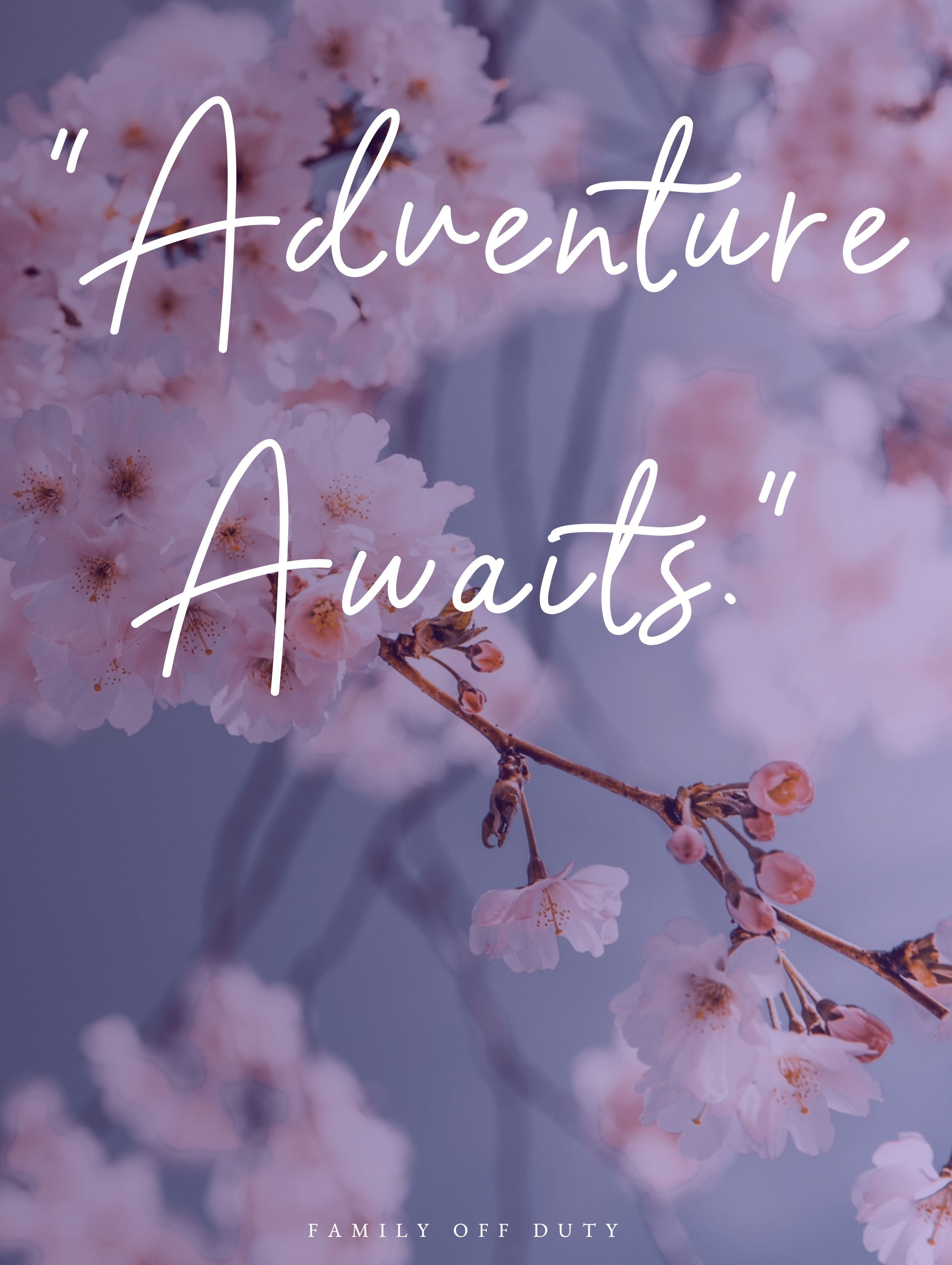 Family Travel Quotes 25 Best Inspirational Quotes For The Traveling Family Family Vacation Quotes Vacation Quotes Family Travel Quotes