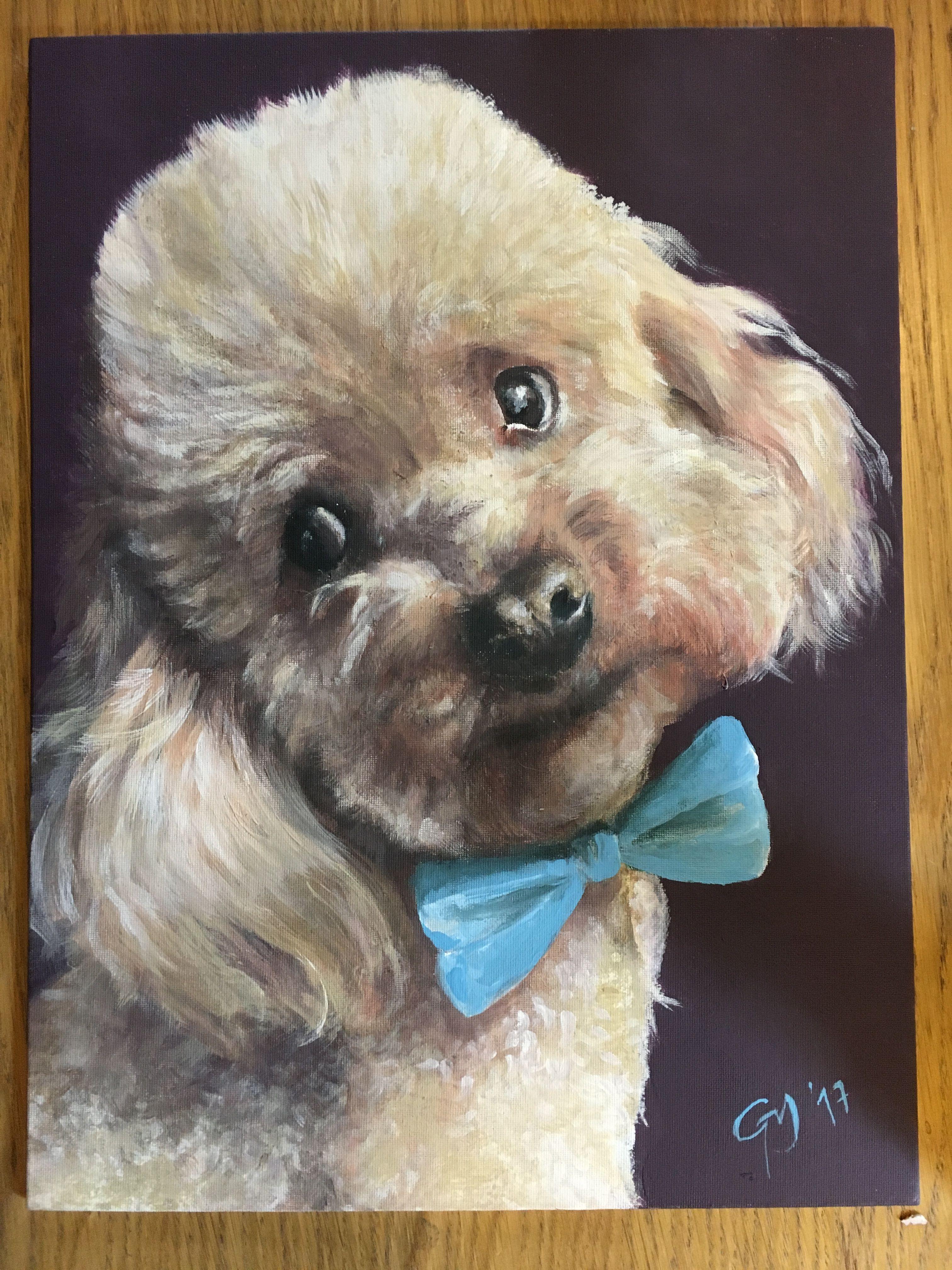 Ritratto di Freddy , dipinto a mano libera, artista Giulia Meregalli