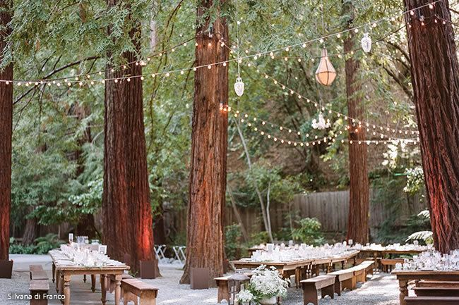 29 Woodsy Wedding Venues In Northern California See Prices Outdoor Wedding Venues California California Outdoor Wedding Bay Area Wedding Venues