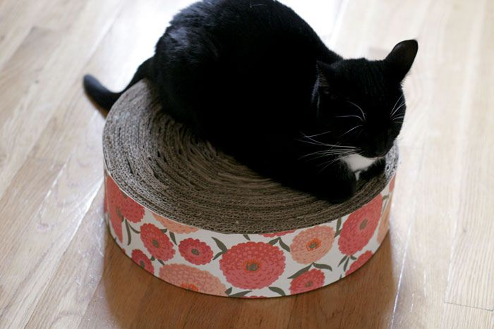 Homemade cratching pad cat stuff pinterest cat cat homemade cratching pad do it yourself projectscat solutioingenieria Gallery