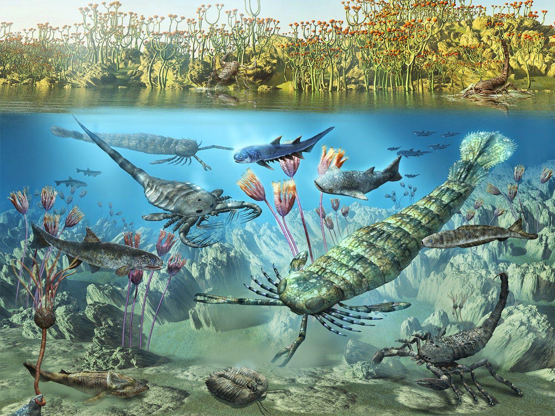 Late Devonian Animals