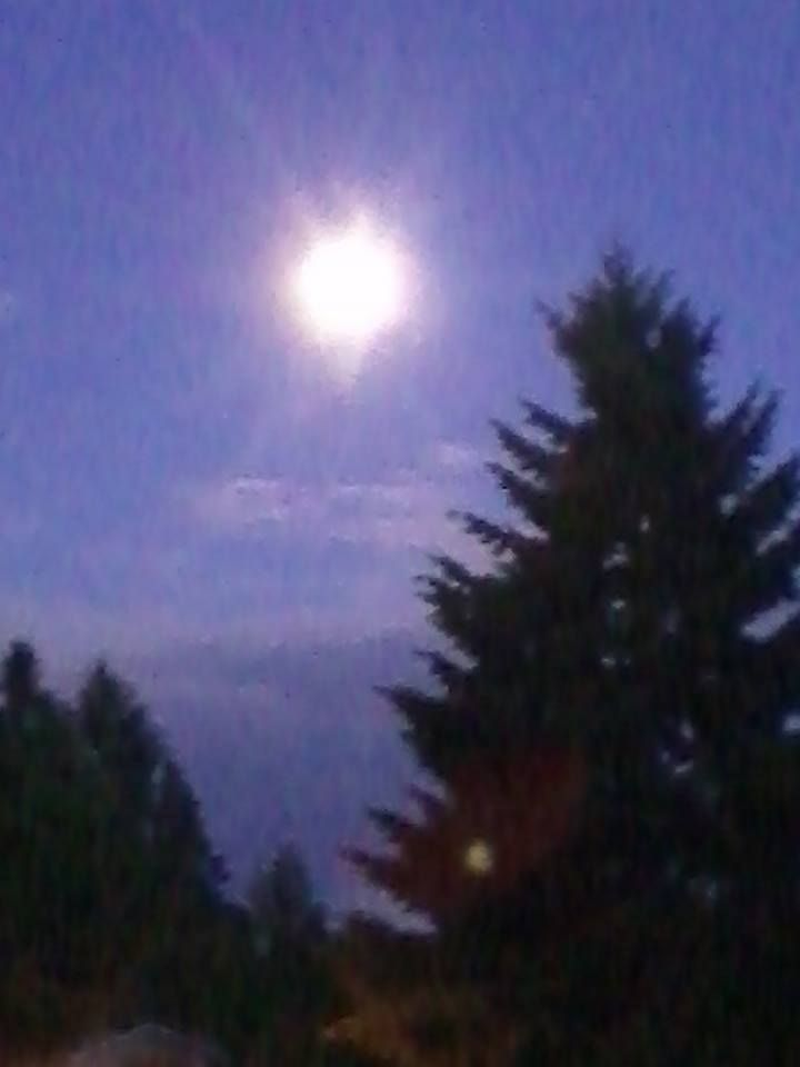 Full moon from our back deck. Tacoma, WA