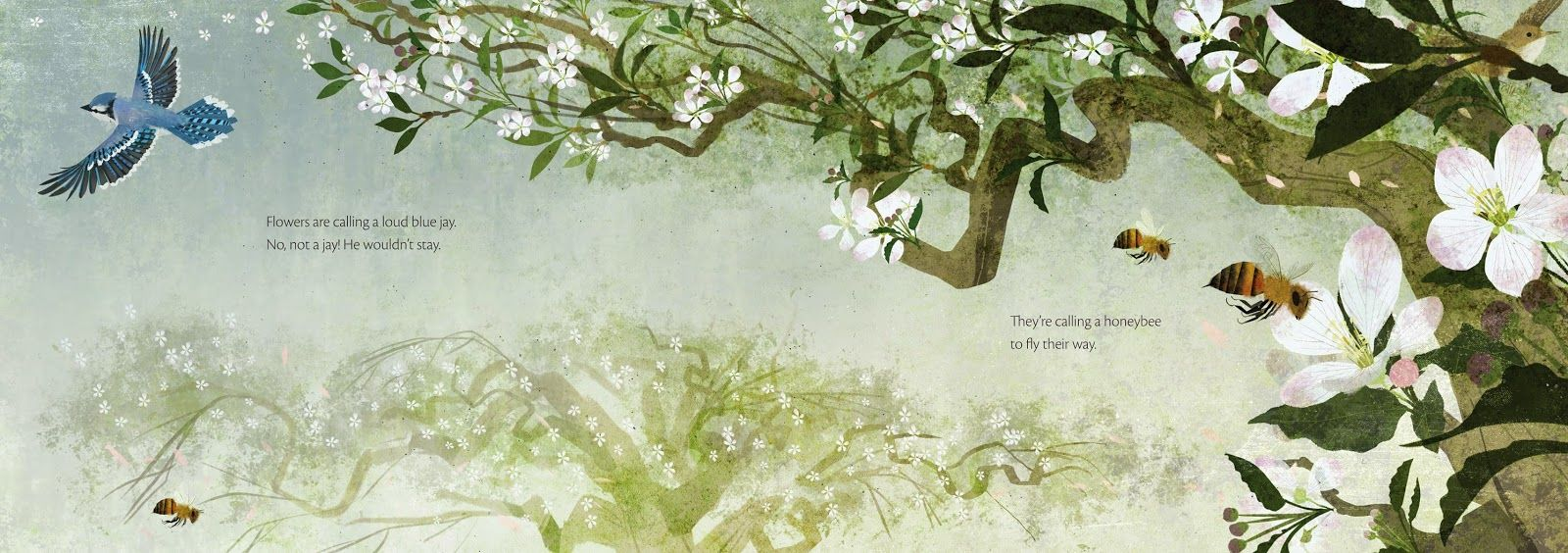 Flowers Are Calling By Rita Gray Illustrated By Kenard Pak Picture Book Nature Illustration Flowers