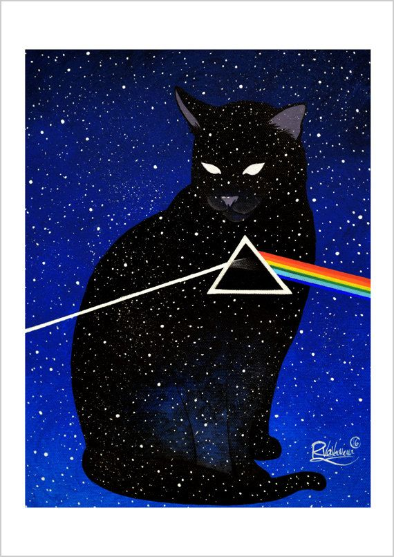 The dark side of the cat by RaphaelVavasseur on Etsy