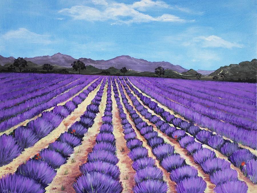 Lavanda V Zhivopisi Lavender Fields Provence Fine Art