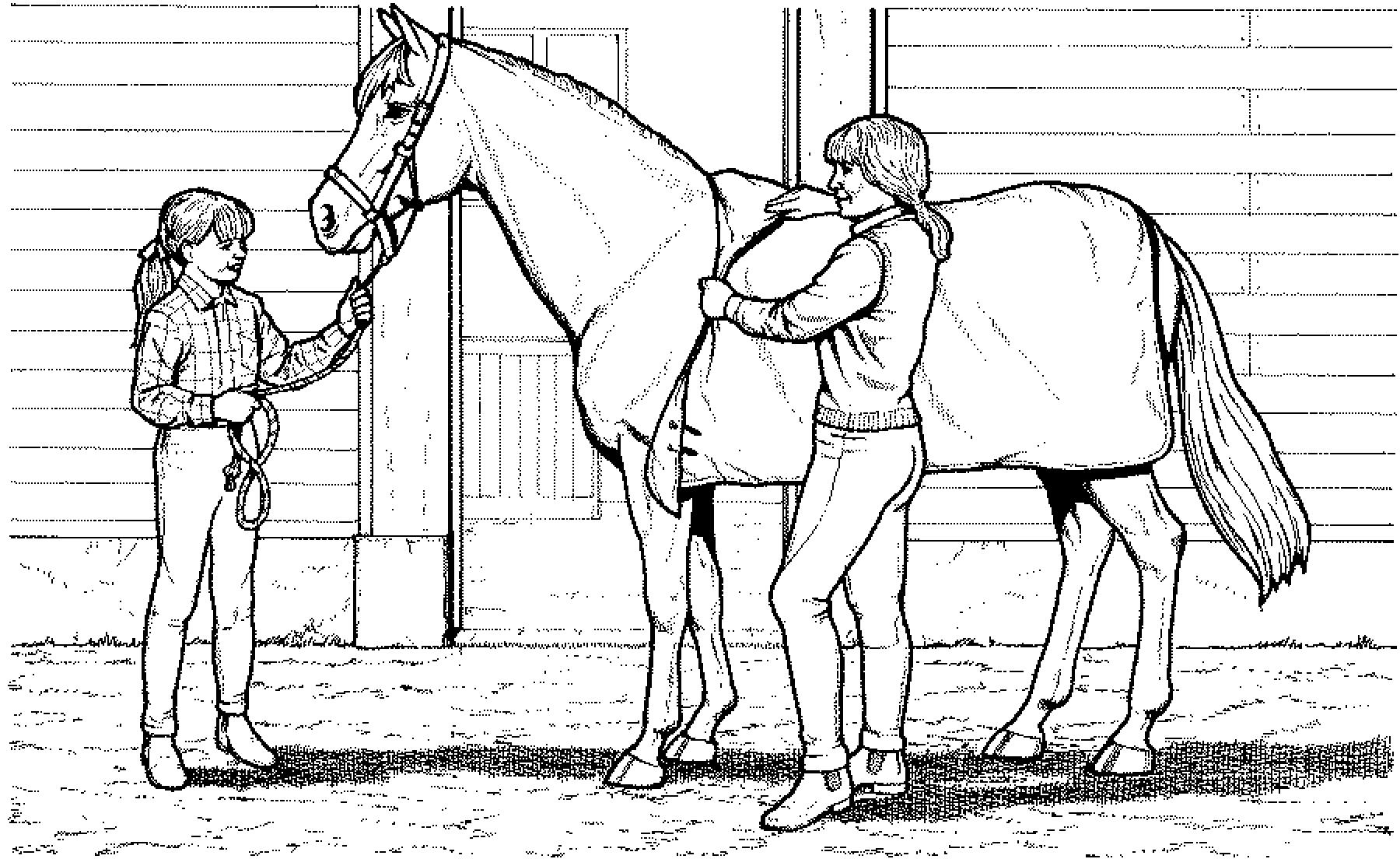 Ausmalbilder Pferde 07