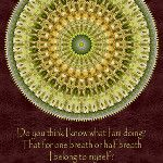 #QUOTE: Mawlana Rumi(1207-1273). #Poem #Poetry #MawlanaRumi #Rumi