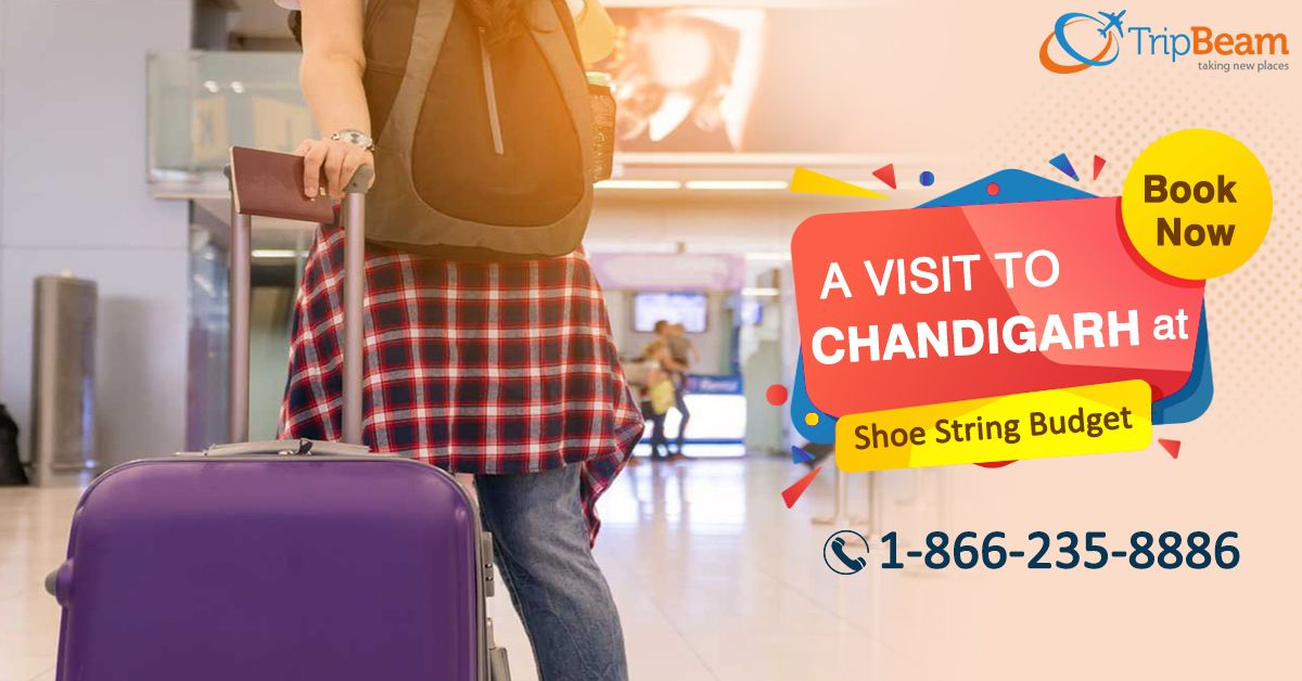See the beautiful city, #Chandigarh within your budget!  Find the best offers on Chandigarh tour packages at #Tripbeam. Contact Us for Best #Deals Now!!  For more information: Contact us at 1-866-235-8886 (Toll-Free).  #chandigarhtravel #Tourists #travel #tourism #TouristsAttractions #destinations #vacations #Indian #USAtoIndiaFlights #FlightDeals #USA #Airlines #travel #CheapAirlineTickets #Cheapflightbooking #VisitChandigarh