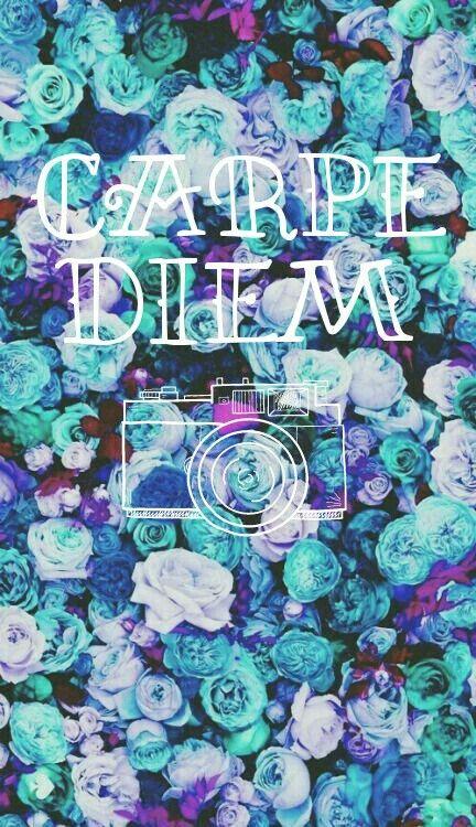 Carpe Diem Wallpaper Cute Wallpapers Iphone Background Wallpaper