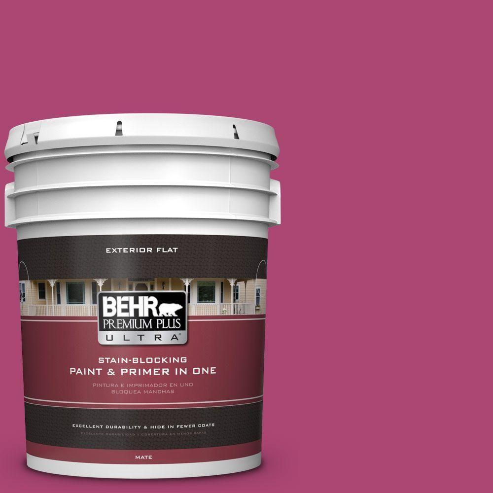 Beau #100B 7 Hot Pink Interior/Exterior Paint Sample, Reds/Pinks
