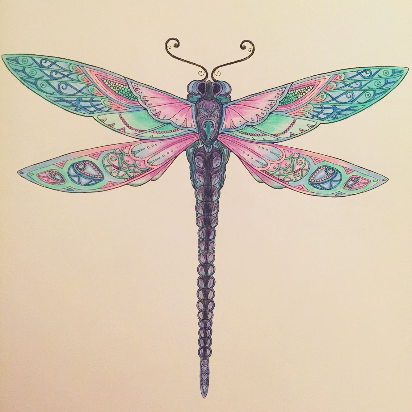 Enchanted forest colouring dragonfly Johanna Basford