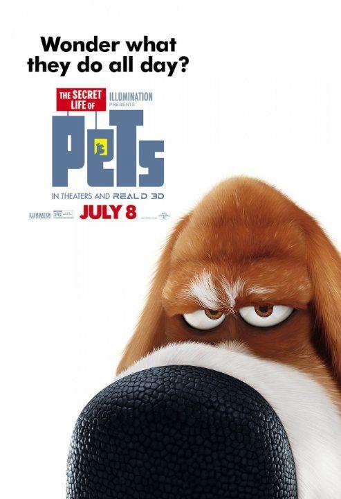 The Secret Life Of Pets 2016 Secret Life Of Pets Pets Movie Secret Life