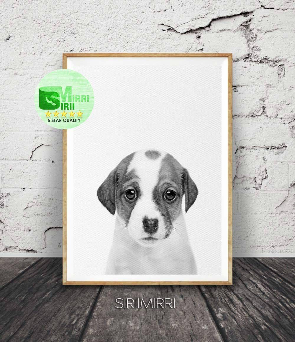 Dog print dog photo dog printable art dog decor nursery decor