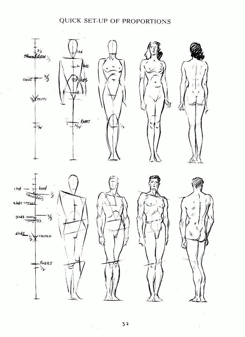 018_1.jpg 850×1,169 pixels | Figure references | Pinterest | Anatomy ...