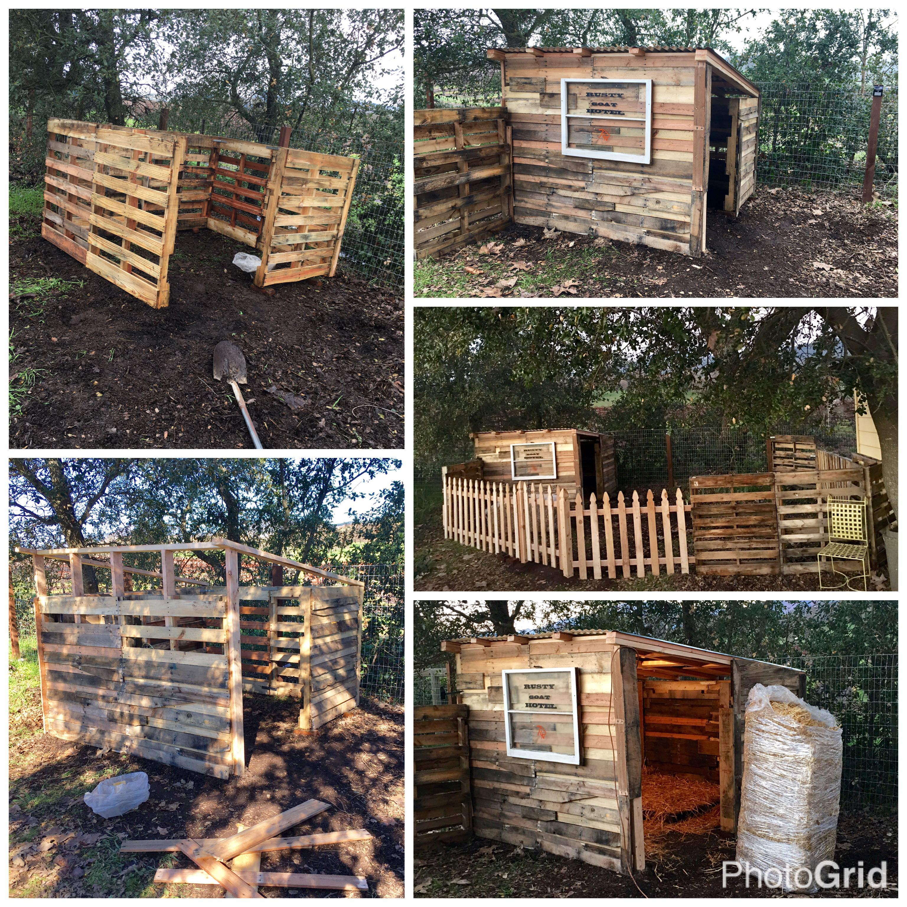 House Made From Pallets Goat House Made From Pallets Rusty Goat Hotel Made Our Goat