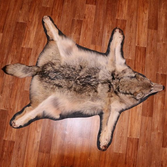 Wolf Taxidermy Fur Rug Carpet Skin Pelt Hide New By