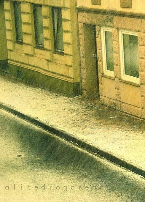 "Photo ""lesmiserables"" by alicedrogoreanu"