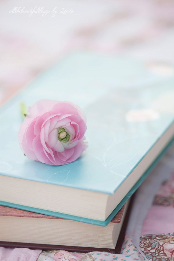 Photography by Loreta from allthingsbeautiful. #allthingsbeautiful #loreta #photography #pink #blue #pastels #pale #flowers #books