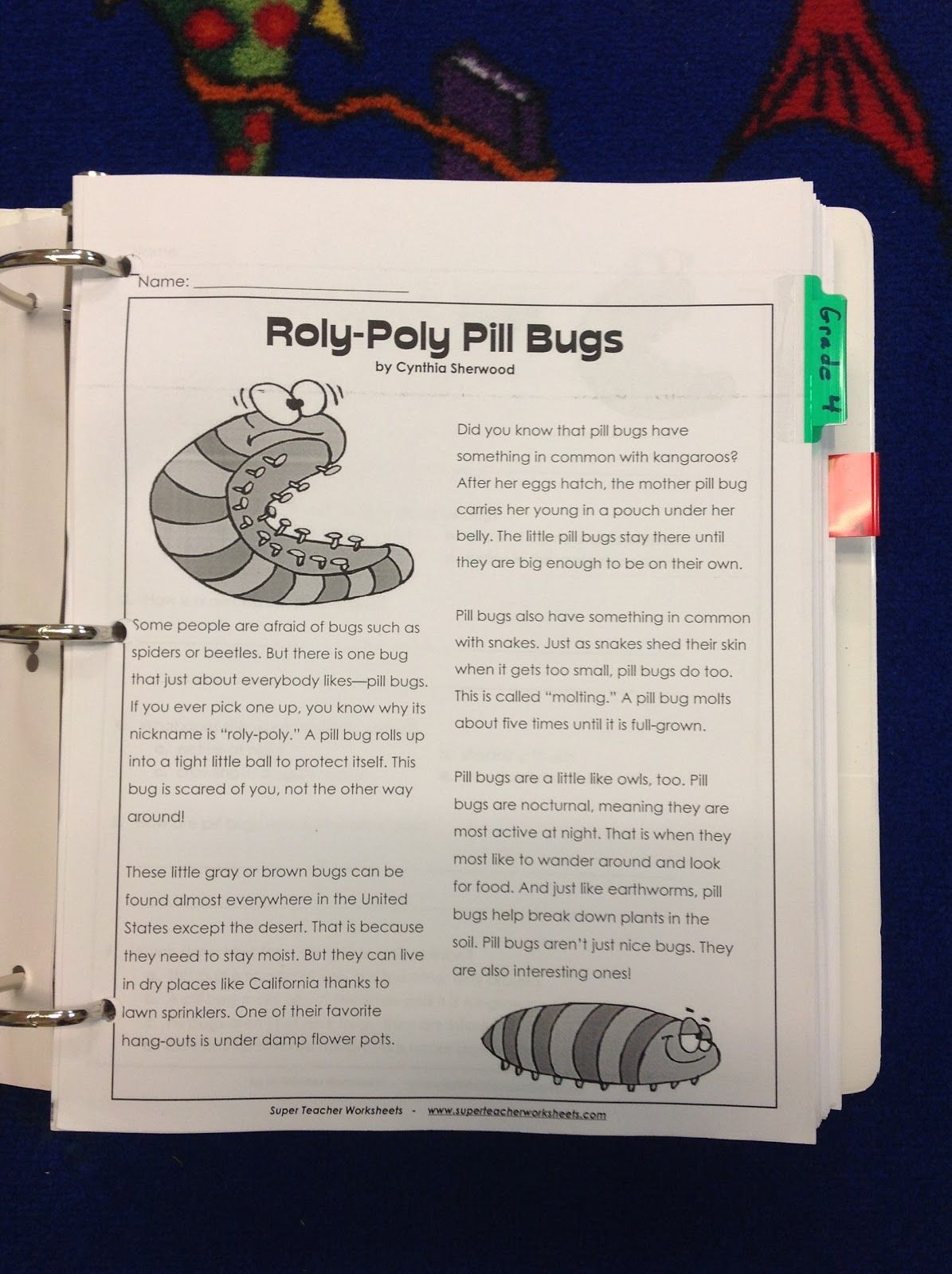 Comprehension Binder Organization For Rti With Images