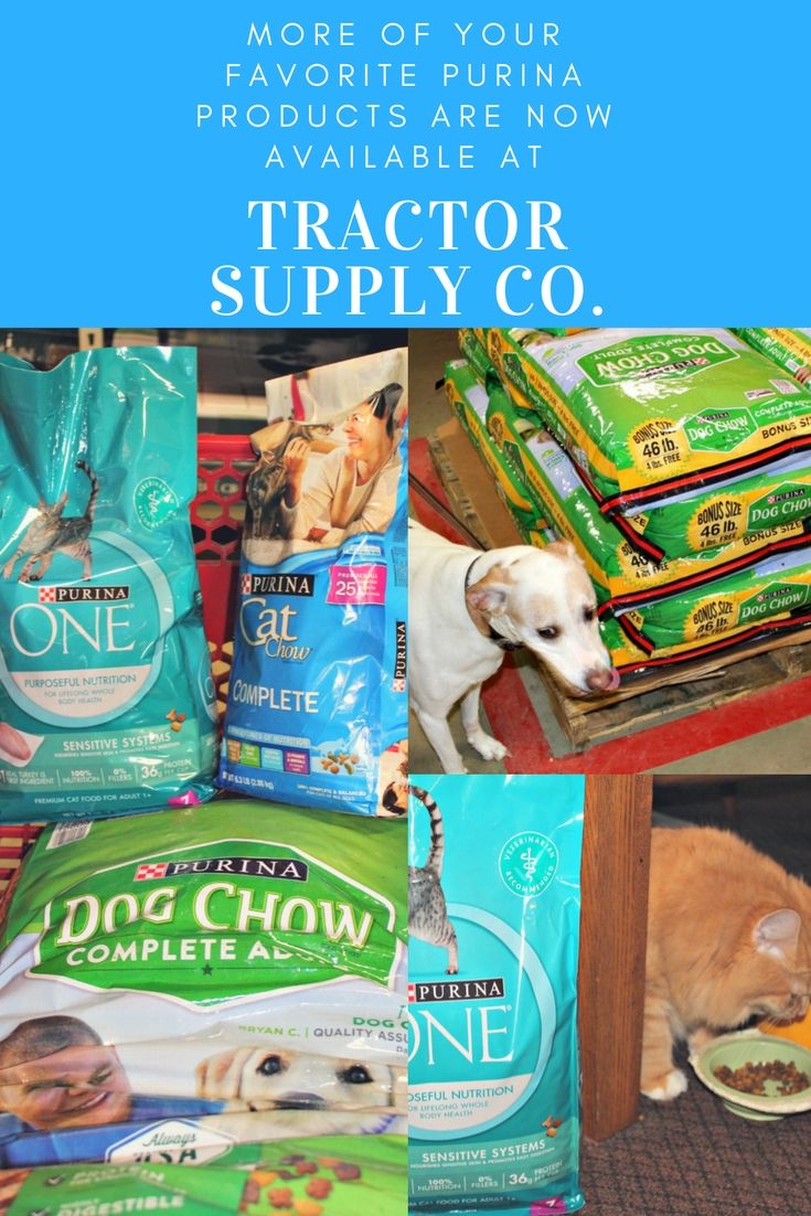 Get Your Purina Pet Products At Tractor Supply Online Pet
