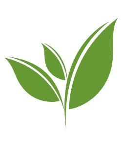 Tealeaf Tea Leaves Illustration Tea Logo Tea Illustration