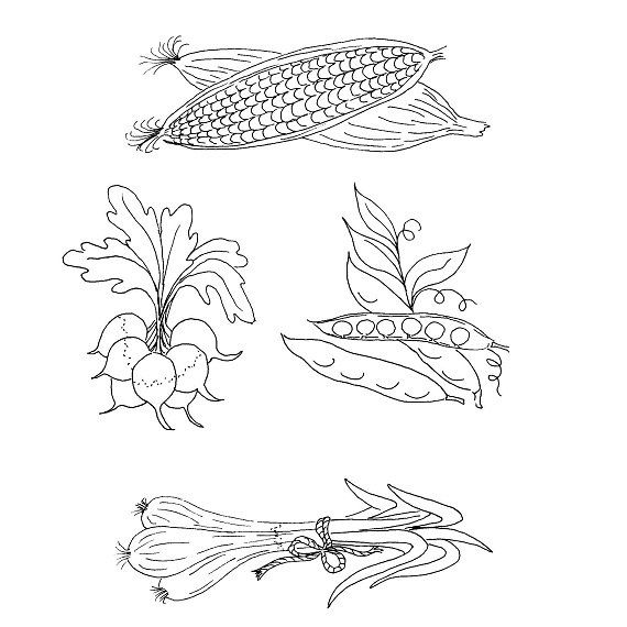 Vintage Hand Embroidery Transfer Patterns Vegetable For Days Of The