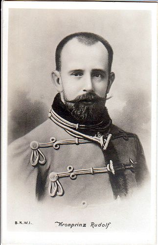 Crown Prince Rudolph Of Austria Hungary Rudolf European History Austria