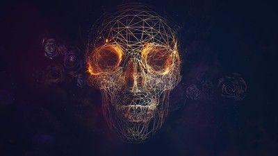 Geometric Skull Wallpaper Skull Wallpaper Skull Artwork Geometric Skull Wallpaper