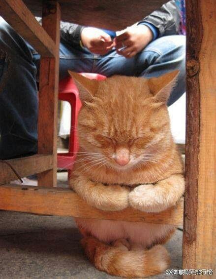 And now I lay me down to sleep...