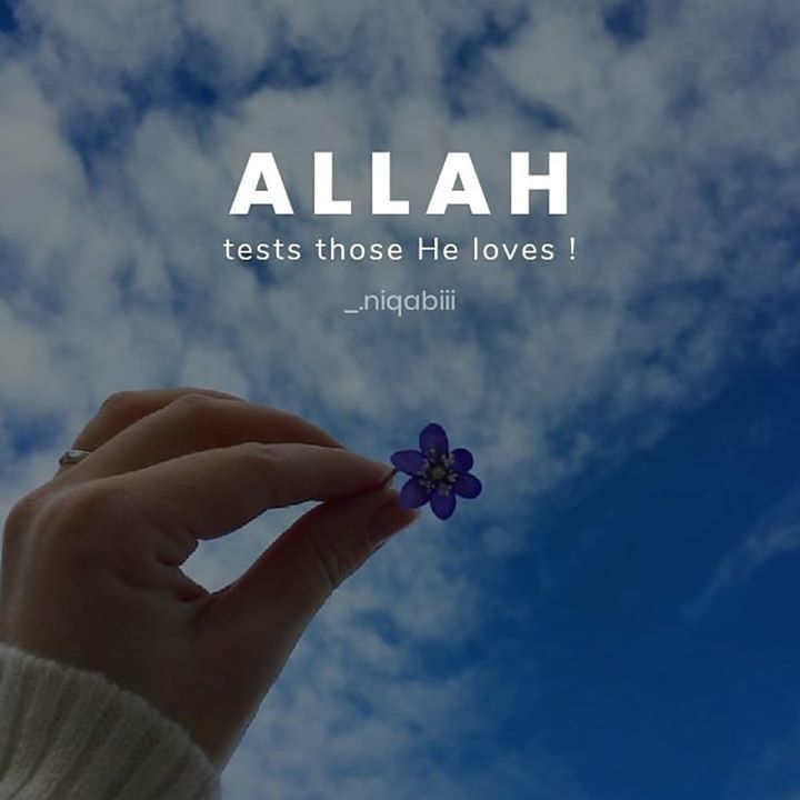 Husband Wife Marriage Muslim Islam Piouscouple Love Muslimah Quotes Islamicquotes Al Quran Quotes Love Islamic Quotes Whatsapp Profile Picture Funny
