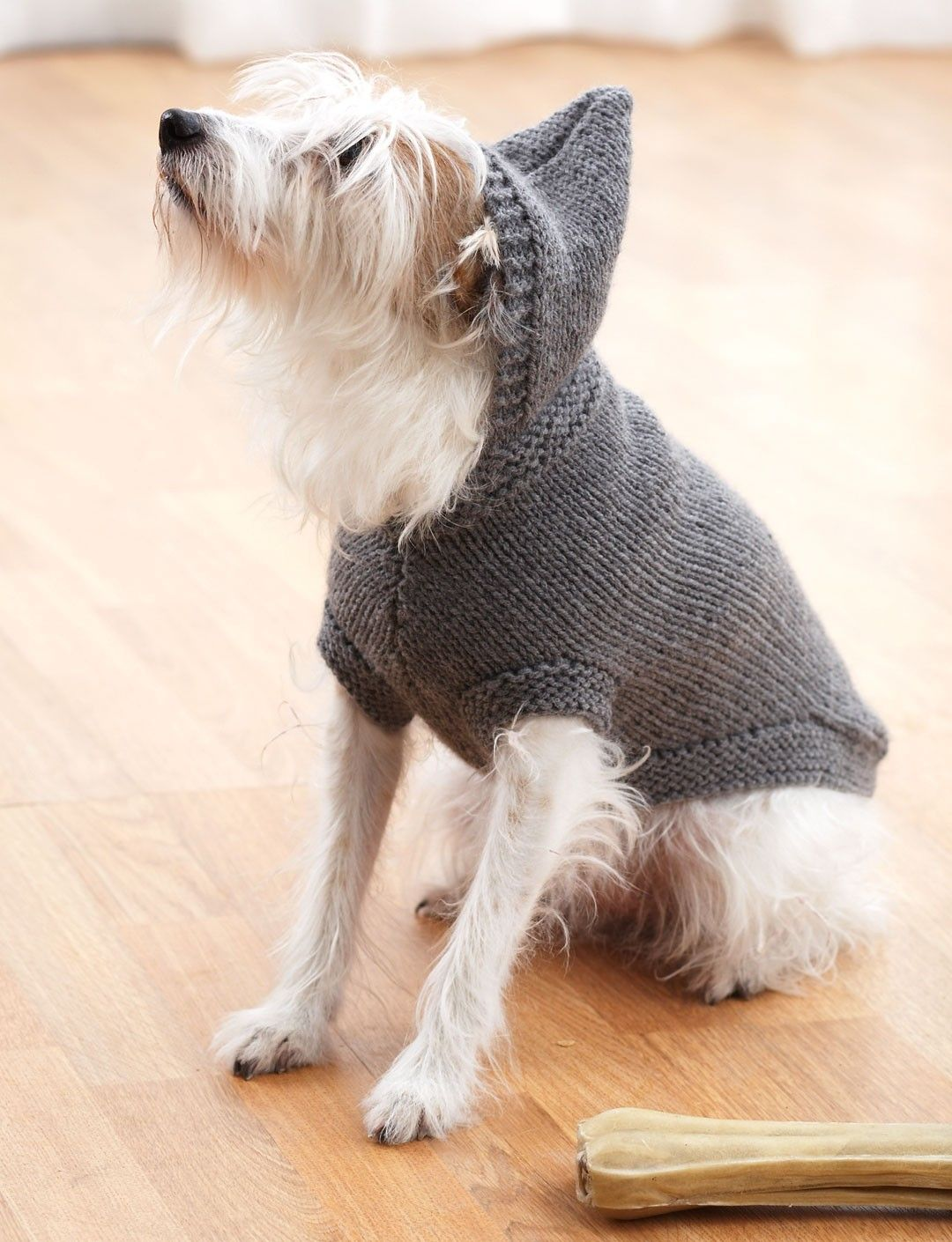 Dog Coat Knitting Pattern : Yarnspirations bernat hoodie dog coat patterns