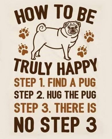 How To Be Truly Happy Pug Hugs Poster Lookhuman Pug Quotes