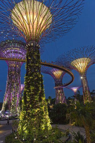 82344464e8d5a29df7046873d9df1d1c - Gardens By The Bay Light Show Best View