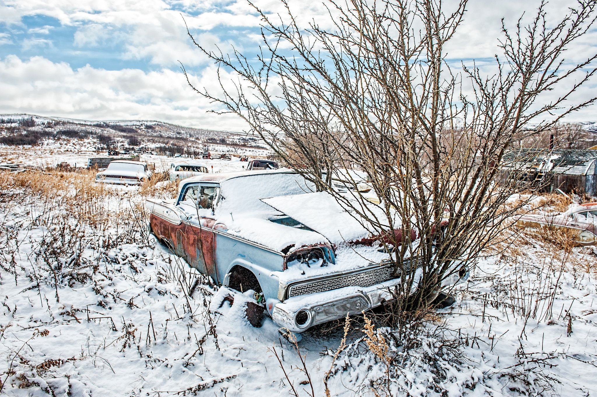Sudden Stop | Farm yard, Cars and Abandoned cars