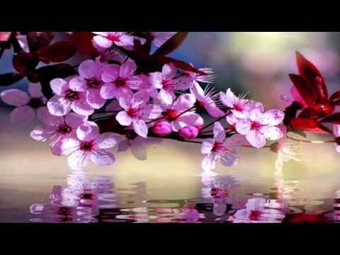 Abraham Hicks , The agreements we make in Nonphysical - YouTube