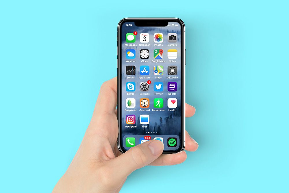 Woman Holding Space Gray Iphone X In Hand Mockup Holding Space Iphone Iphone Mockup