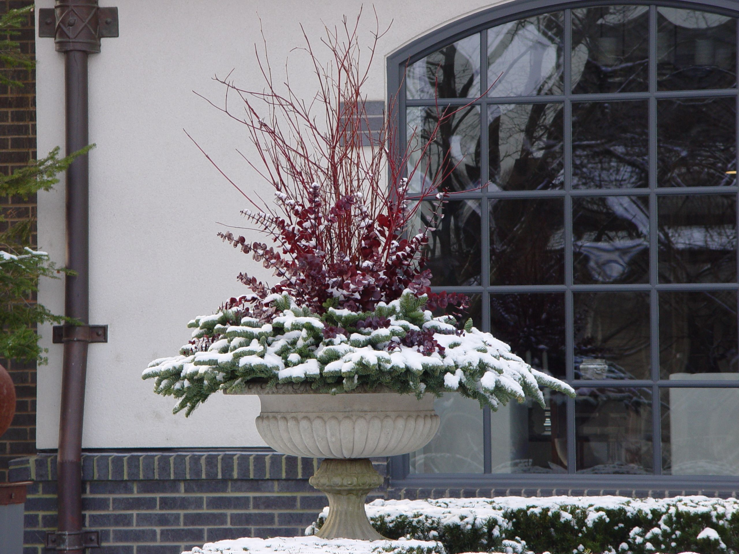 with planter out porch pin beautiful ferns check urns s front the blue nester