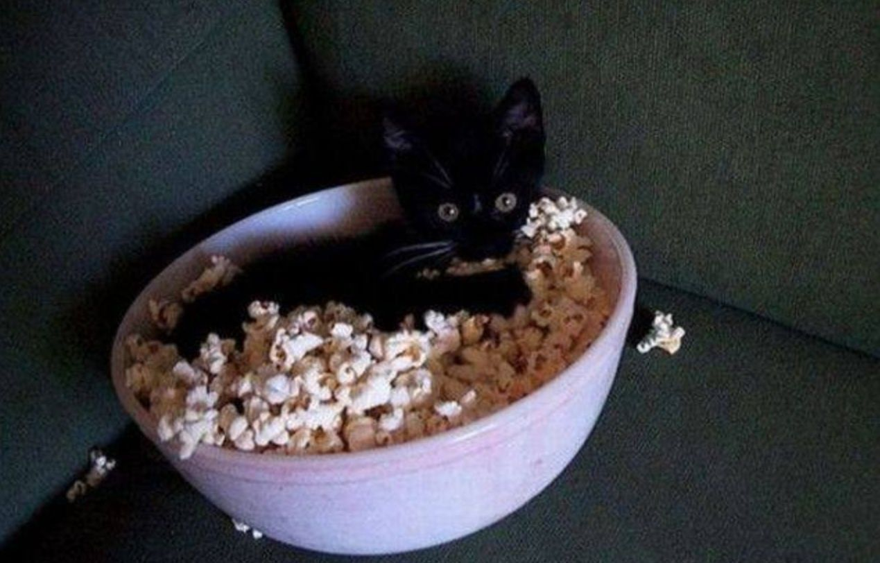 """""""Thanks for the popcorn. Where's yours?"""" - Imgur"""
