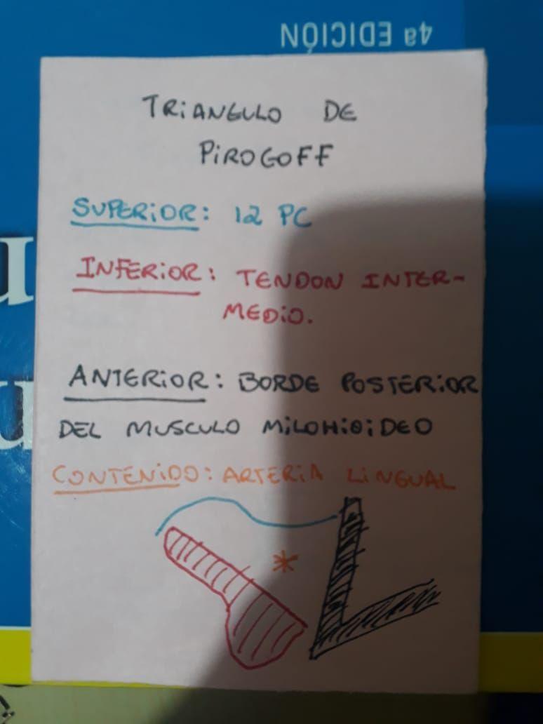 Triangulo De Pirogoff y sus límites | FLASH CARDS | Pinterest