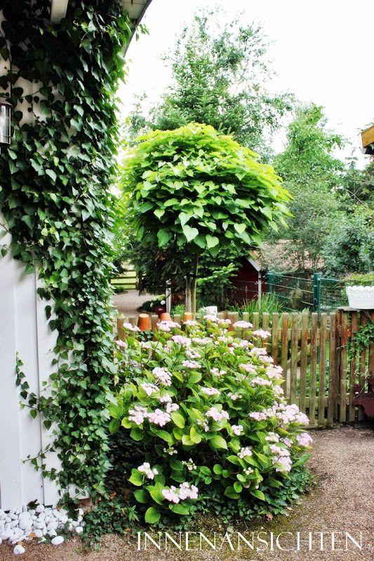 INNENANSICHTEN Garten Garten Pinterest Garten
