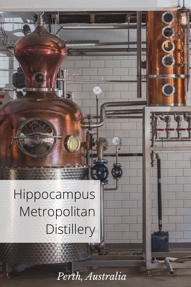 Perth, Australia Hippocampus Metropolitan Distillery Distiller at Hippocampus Meet Alex Hippocampus is a distillery in western Perth, owned by the guys that founded the famous Little Creatures brewery. They recently started distilling wodka, created from local