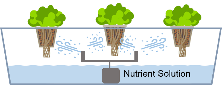 How Different Hydroponics Growing System Works Pros Cons