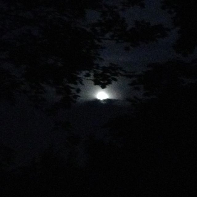 6-3-12 cool moon in NY