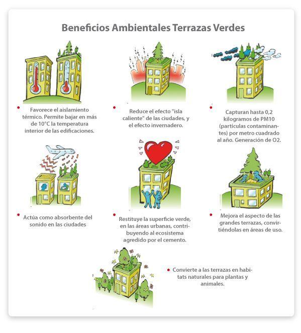Beneficios Ambientales de la azoteas verdes #greenroofs