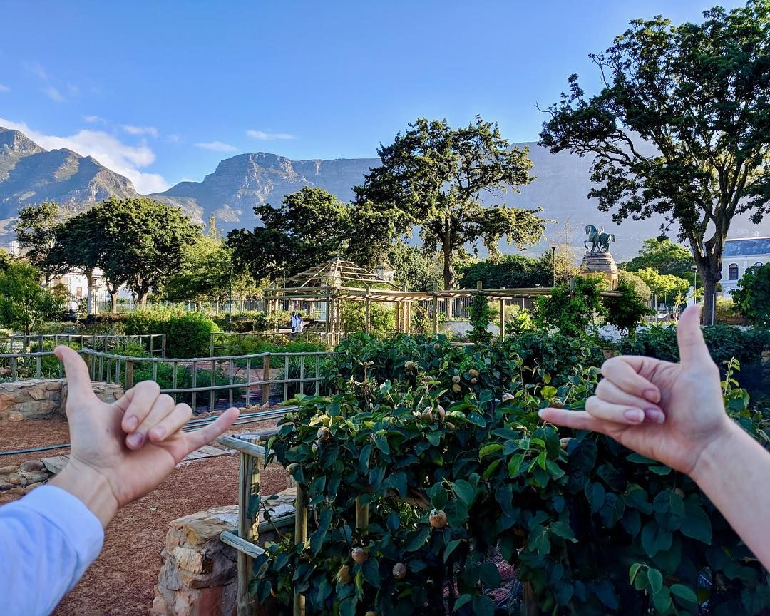 Company S Garden Cape Town South Africa Instagram Cape Town