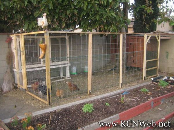 cosy designs for chicken houses. chicken pen  Chicken Houses House Pictures Plans