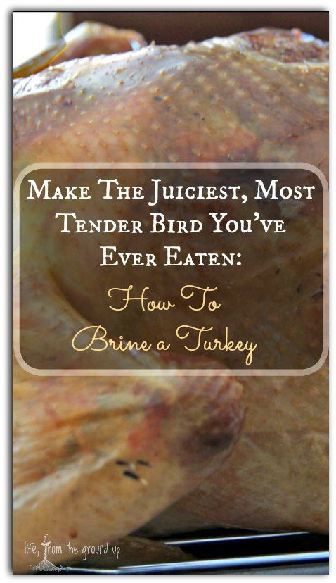 The Foolproof Way to Brine a Turkey