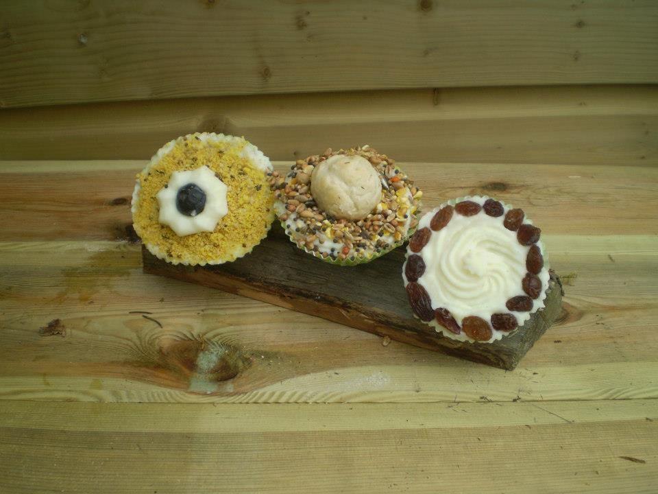 3 cupcakes van vogelvoer Smullen voor de vogeltjes