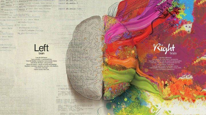 """""""Sono il cervello destro. Sono la creatività. Uno spirito libero. Sono passione. Desiderio. Sensualità. Sono il suono ruggente di chi ride. Sono il gusto. La sensazione della sabbia sotto il piede nudo. Sono movimento. Colori brillanti. Sono la pulsione a dipingere sulla nuda tela. Sono immaginazione senza limiti. Arte. Poesia. Intuisco. Sento. Sono tutto ciò che volevo essere""""."""