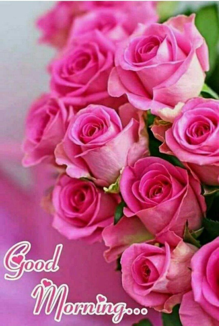 35 Good Morning Quotes And Images Positive Words For Good Morning 21 Beautiful Rose Flowers Beautiful Pink Flowers Rose Flower Wallpaper Good morning pink flowers hd wallpaper